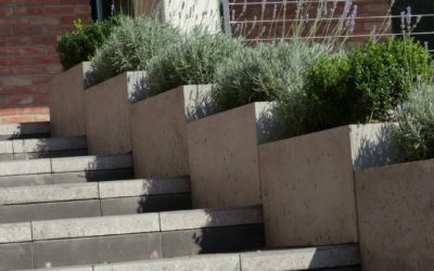 Planters made of architectural concrete